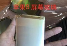 iPhone 8 leaked OLED display panel