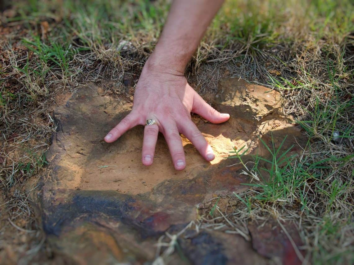 Dinosaur tracks found inside NASA's Goddard campus